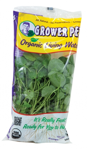 Grower Pete Organic Living Watercress