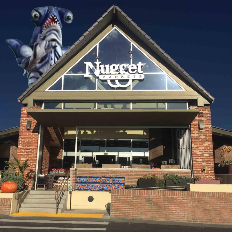 A giant monster attacks Nugget Markets Tiburon